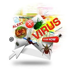 Удаление и лечение вирусов в СПб